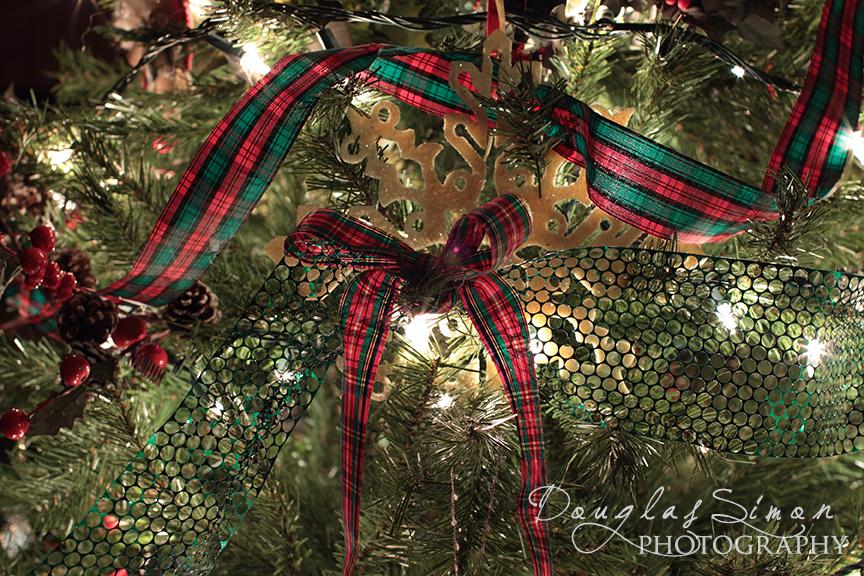 Close up Christmas Photo