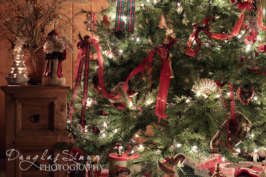 Shooting Christmas Tree Lights