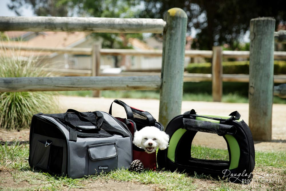 Pet Carrier Product Photography